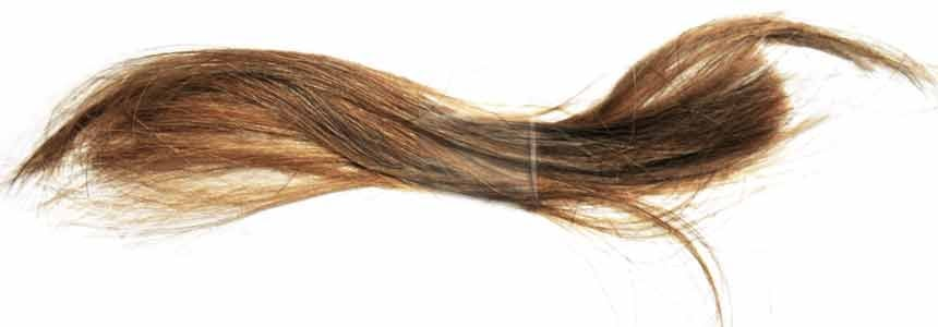 Wig Colors | Selecting A Hair Color | Headcovers